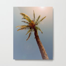 Palm tree under the sun Metal Print