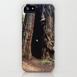 Inside A Redwood  iPhone Case