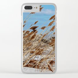 Tame a Wild Wind- horizontal Clear iPhone Case
