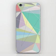 Circle 2 iPhone & iPod Skin