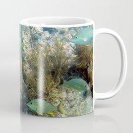 Watercolor Seascape, St John 29, USVI Coffee Mug