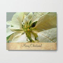 Pale Yellow Poinsettia 1 Merry Christmas S2F1 Metal Print