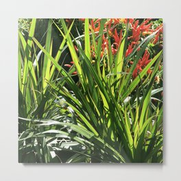 Garden Floral With Lush, Lavish Leaves Metal Print