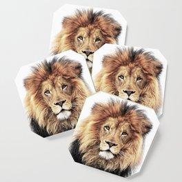 Lion King Coaster