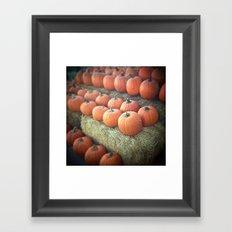Pumpkins On Display Framed Art Print