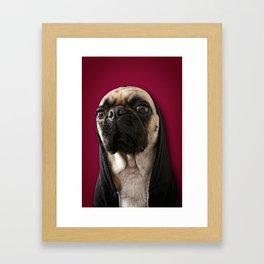 Lola on Red Framed Art Print