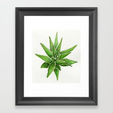 agave Framed Art Print