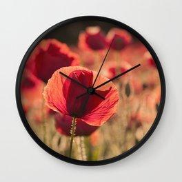 Poppies meadow Flower Flowers Floral Summer Wall Clock
