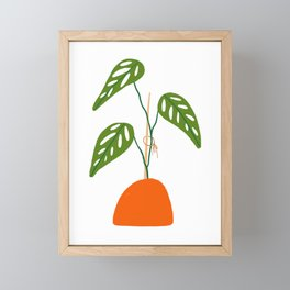 Swiss Cheese Vine Plant Framed Mini Art Print