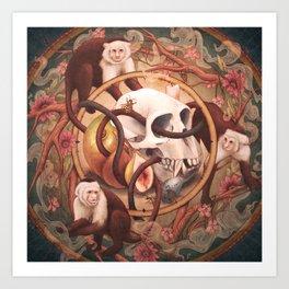 Capuchin Vanitas Art Print