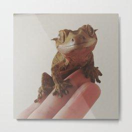 Gecko Smile Metal Print