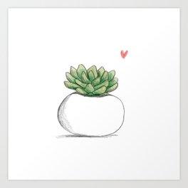 Succulent in Plump White Planter Art Print