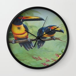 Collared Aracari Wall Clock