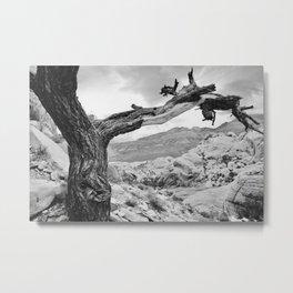 Wishbone Tree Metal Print