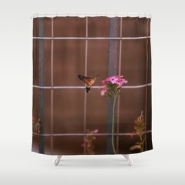 Hummingbird hawk-moth Shower Curtain