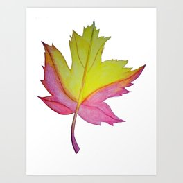 Red and yellow leaf Art Print