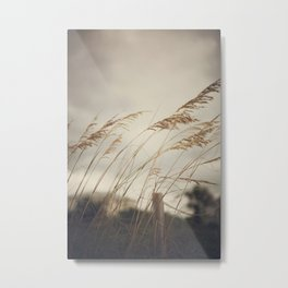 Wild Oats to Sow Metal Print