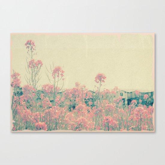 Vintage Spring Soft Pink Wildflowers Canvas Print