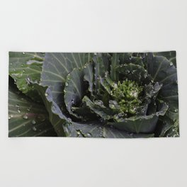 Green Bliss (3rd in Cabbage collection) Beach Towel