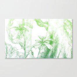 Amazonia (green) Canvas Print