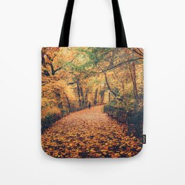 Autumn Walk New York City Tote Bag