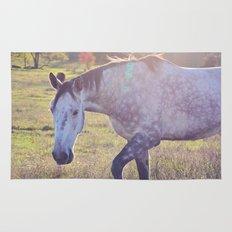 Star Horse Rug