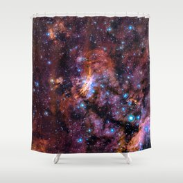 The Prawn Nebula Shower Curtain