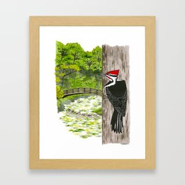 Pileated Woodpecker Framed Art Print