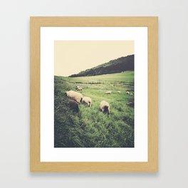 Curly Framed Art Print