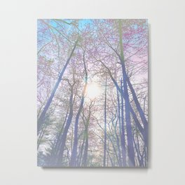 Forest Bath Metal Print