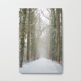 A long forest road covered with snow | fine art photo print in the netherlands | nature and travel photograpy Metal Print