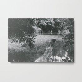 Branch Metal Print