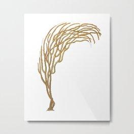 Sea Coral No.3 Antique Natural History Print. Metal Print