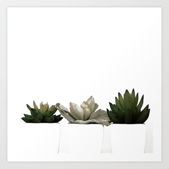 Lovely green cactus - cacti in white pots on a white background Art Print