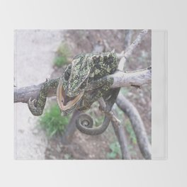 Colourful Chameleon Wrapped Around A Branch Throw Blanket