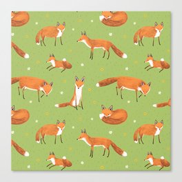 Red Foxes Canvas Print