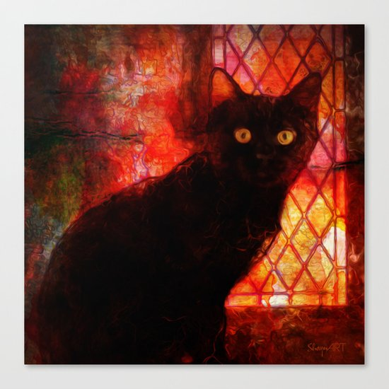 Staring Cat  Canvas Print
