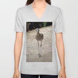 painting of curlew  Unisex V-Neck