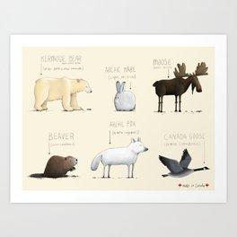 Canadian Animals Art Print