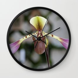 orchids 16.6 Wall Clock
