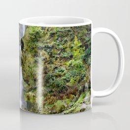 Pistyll Rhaeadr Coffee Mug