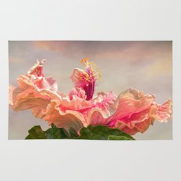 isolated hibiscus in bloom on tecture background Rug
