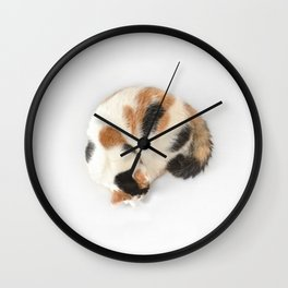 Sleeping Calico Cat Wall Clock