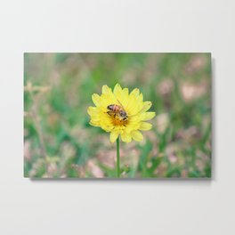 Nature In April - 2 Metal Print