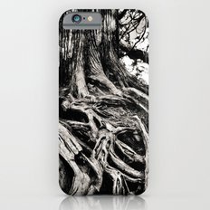 Beauty in the old iPhone 6s Slim Case