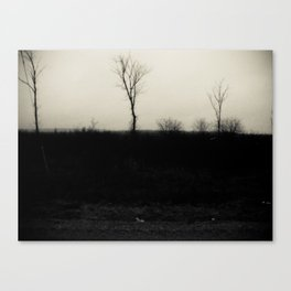Desolation 5 Canvas Print