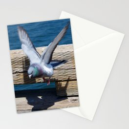 Pigeon in Flight Stationery Cards