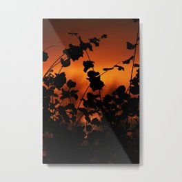 The evening sky through the moody bushes Metal Print