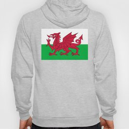 Welsh Flag Hoody