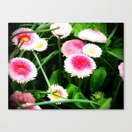 Strawberries and Cream Canvas Print